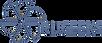 RuGeeks - масштабируемые цифровые решения