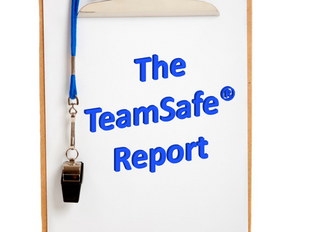 The TeamSafe​® Report #3