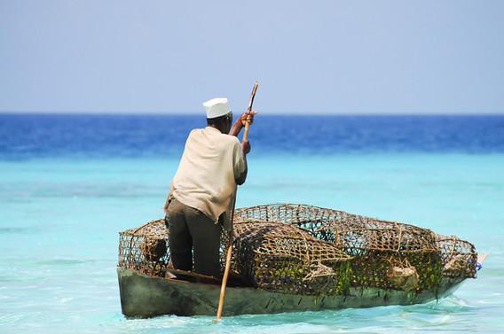 Fisherman with Traps - Zanzibar - Tanzan