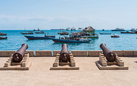 embankment with guns in Zanzibar Stone T
