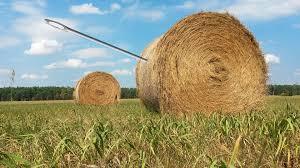 Hello Haystack, I'm Needle!