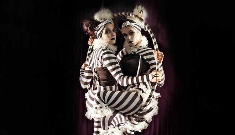 cirque da purr