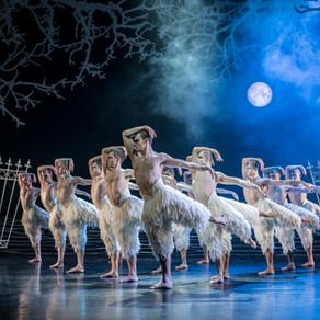 Matthew Bourne's Swan Lake – Bristol Hippodrome REVIEW