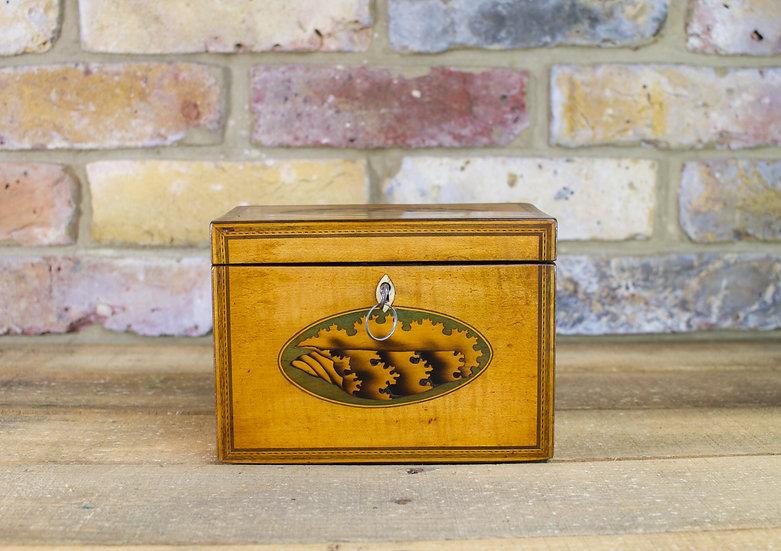 Shell Inlay Georgian Tea Caddy c.1790 SOLD