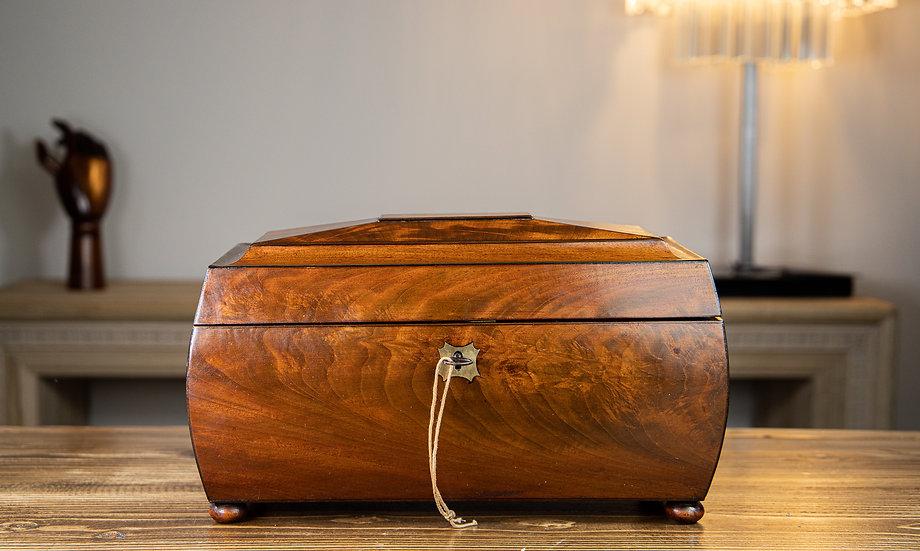 Stunning Large Bombay Mahogany Tea Caddy 1810