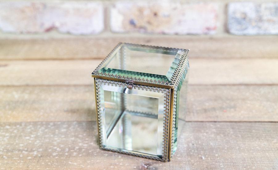 Glass Display Box c.1920