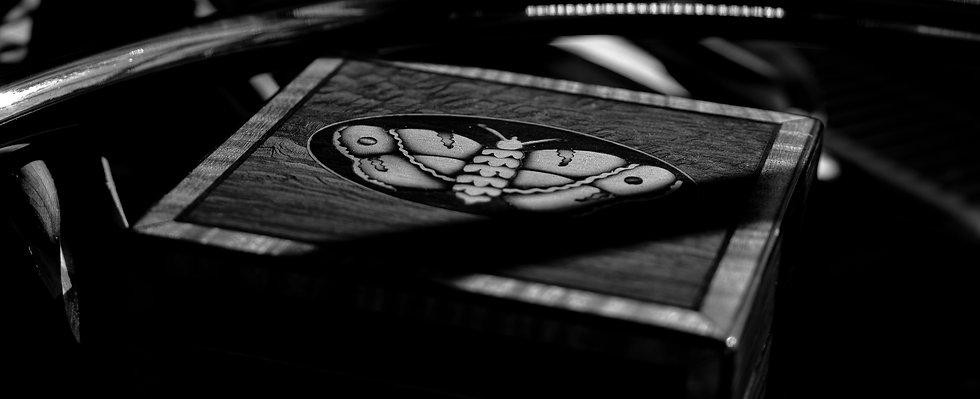 Victorian Moth Inlaid Tea Caddy