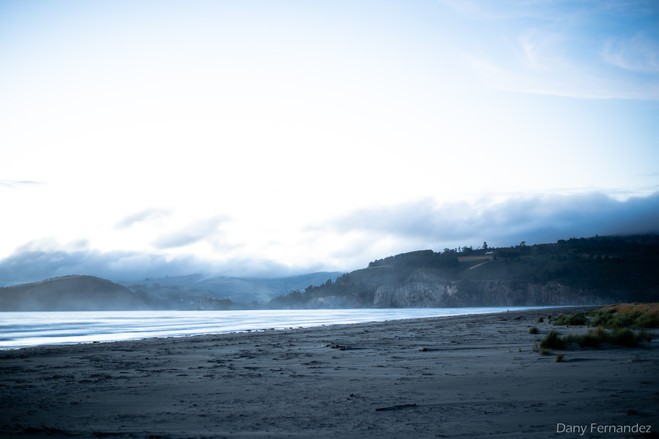 NZ 06.jpg