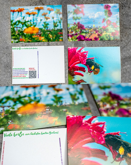 Photography Postcard Prints