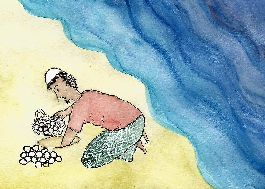 Turtle egg collector