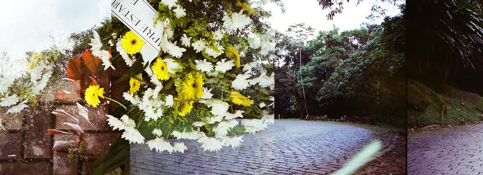 panorama-fotografia-de-Cayo-Vieira-013.j