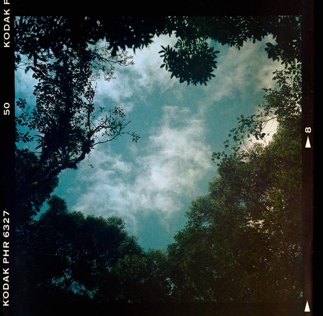 fosfema-fotografia-de-Cayo-Vieira-004.jp