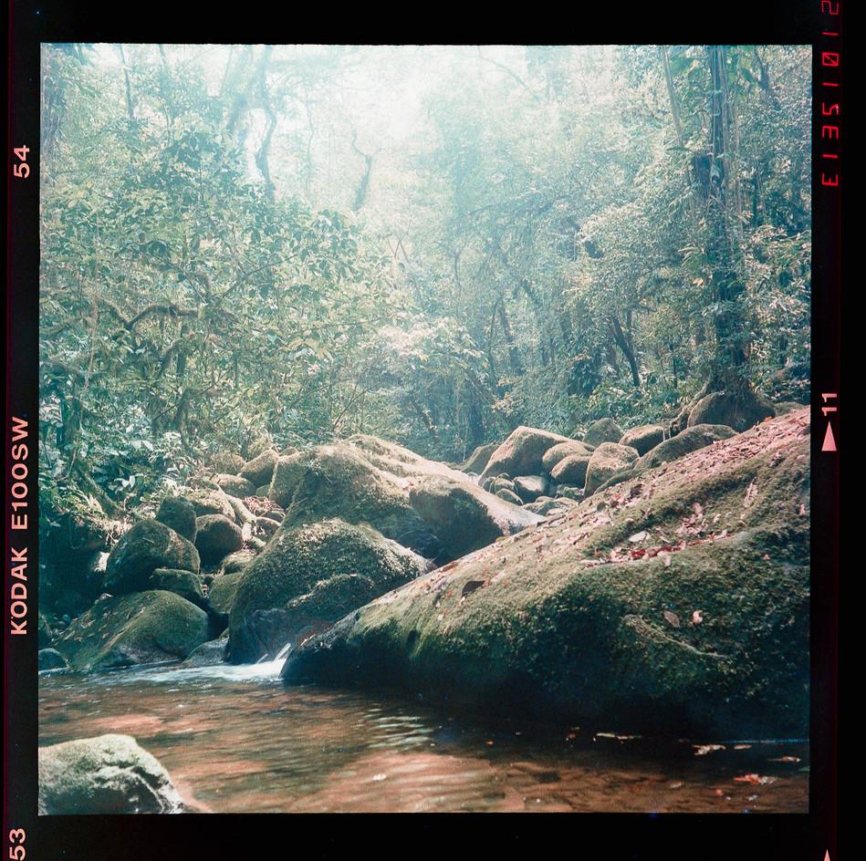 fosfema-fotografia-de-Cayo-Vieira-010.jp