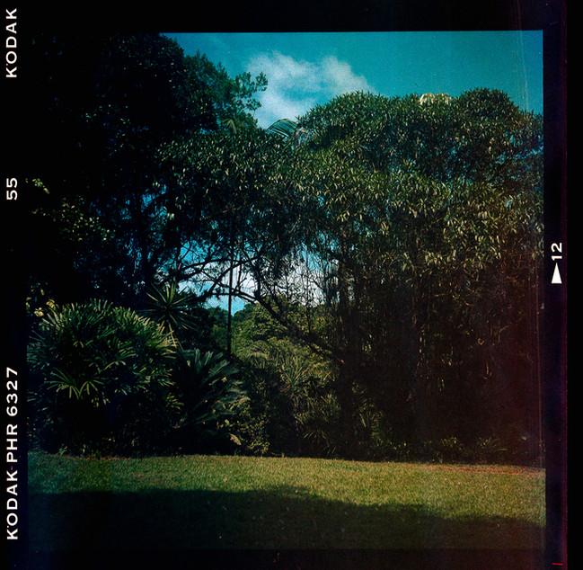 fosfema-fotografia-de-Cayo-Vieira-001.jp