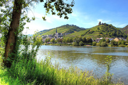 Bild-Mosel-u.-Burg_WEB