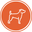 Manage your pet's health online - Kingsport, TN