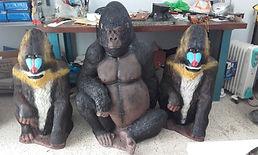 gorille et mandril.jpg
