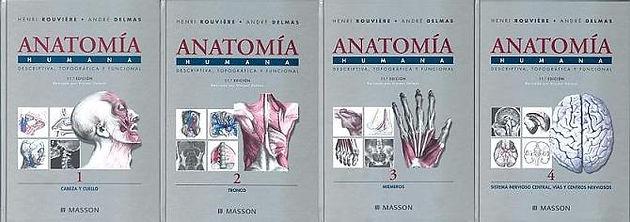 libro de anatomia de rouviere descargar