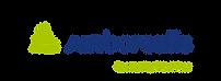 air borealis logo.png