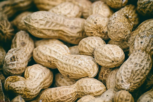 peanuts-shell-eat-nuts-food-nutrition.jp