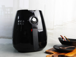 The Virtues of an Air Fryer