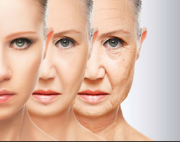 Slow The Aging Process. Collagen Update!