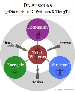 3 DIMENSIONS OF WELLNESS.png
