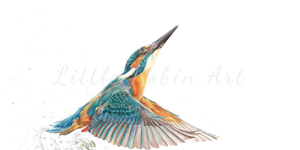 Kingfisher Watercolour Workshop