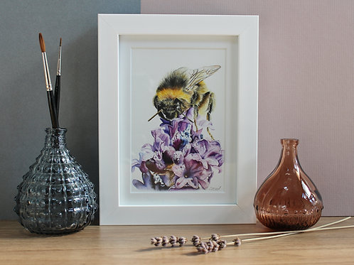 Bumblebee Art Print - Framed