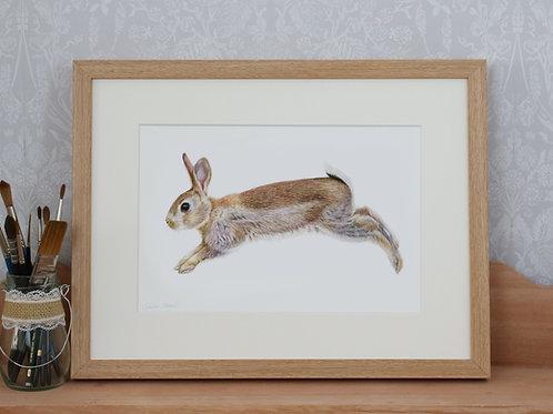 """Bunny - """"Leap for Joy"""" - Art Print - Framed"""