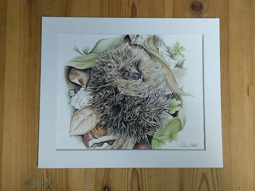 """Original - 12x10 Hedgehog """"Hibernate"""" in Watercolour"""