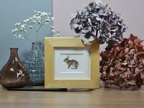 Mini Rabbit Art Print - Framed