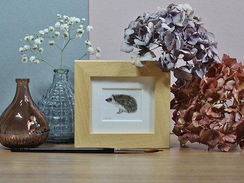 Mini Hedgehog Art Print - Framed