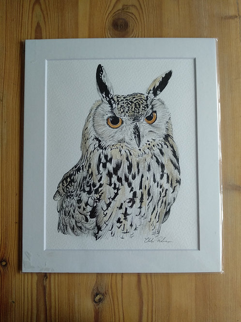 Original - 12x10 Owl in Watercolour