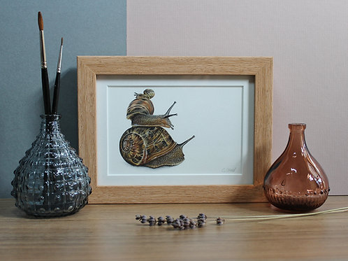 "Snails - ""Three's a Crowd"" - Art Print - Framed"