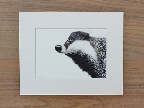 "Badger - ""TruffleHunter"" - Art Print - Mounted"