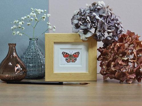 Mini Peacock Butterfly Art Print - Framed