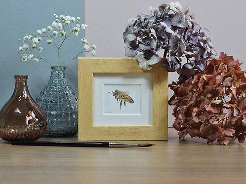 Mini Honey Bee Art Print - Framed