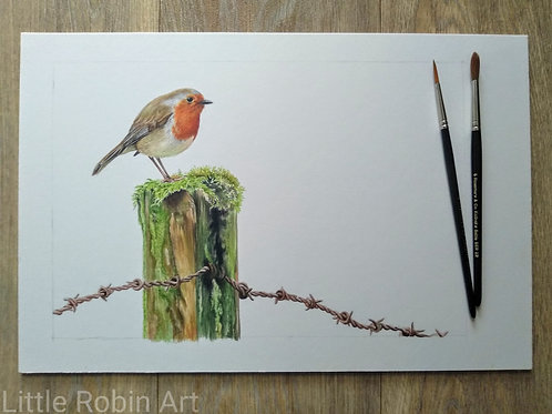 "Robin - ""Soft Landing"" - Original - Mounted"