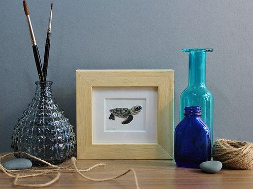 Mini Sea Turtle Art Print - Framed