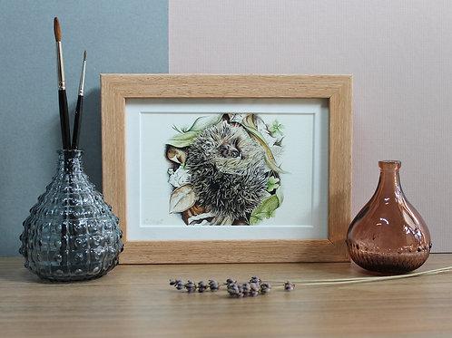 "Hedgehog - ""Hibernate"" - Art Print - Framed"