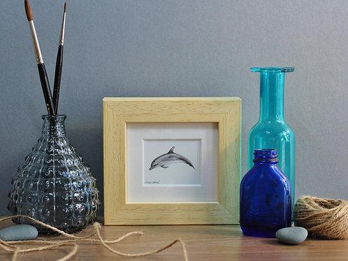 Mini Bottlenose Dolphin Art Print - Framed