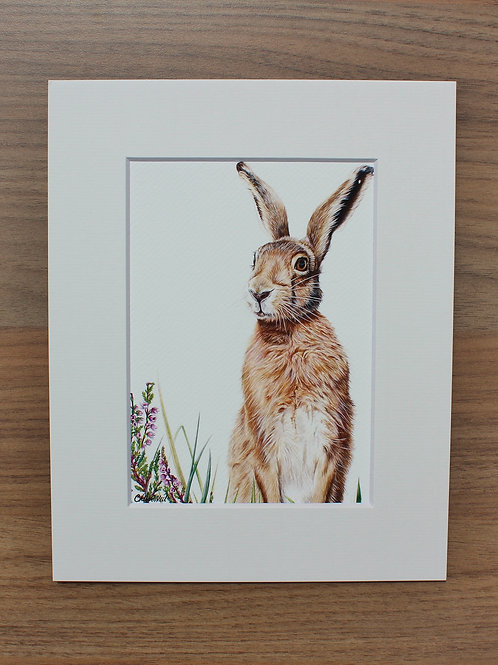 "Hare - ""Heather"" - Art Print - Mounted"