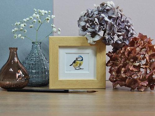 Mini Blue Tit Art Print - Framed