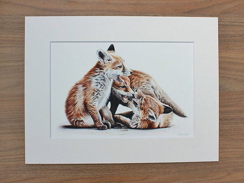 "Fox Cubs - ""Gametime"" - Art Print - Mounted"