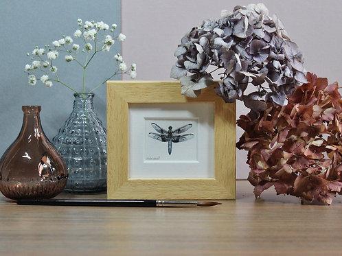 Mini Dragonfly Art Print - Framed