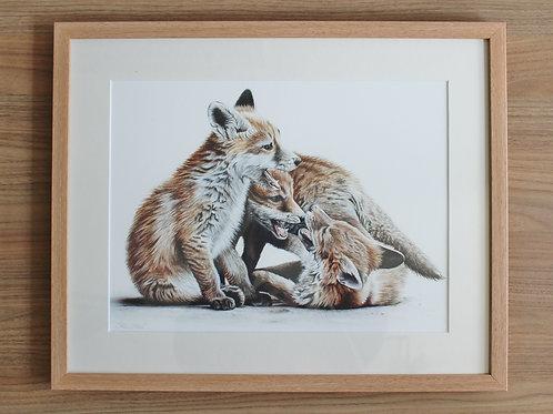 """Fox Cubs - """"Gametime"""" - Art Print - Framed"""