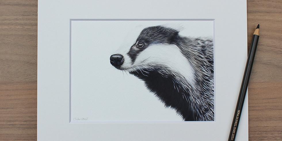 Badger Coloured Pencil Workshop