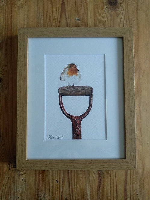 Framed 10x8 Robin Print in Brown