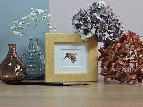 Mini Carder Bee Art Print - Framed